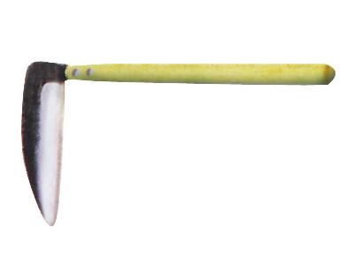カマ 画像1
